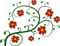 Brindille verte et fleurs rouges Photos libres de droits