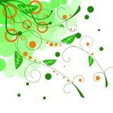 Brindilles avec les lames vertes, abstraites Images libres de droits