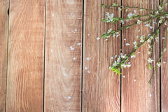 Brindilles de floraison sur une vue supérieure en bois de Tableau Photo stock
