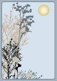 brindilles de jour Image libre de droits
