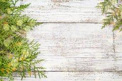 Brindilles de Thuja sur le fond en bois blanc avec la neige et le bokeh, l'espace de copie photo stock