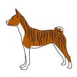 Brindle basenji psa pozycja ilustracji