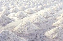 Brine salt farm at Samut Sakhon, Thailand. Organic sea salt. Evaporation and crystallization of sea water. Raw material of salt. Industrial. Sodium Chloride stock photo