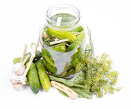 Free Brined Pickles In A Jar Stock Photography - 98364812