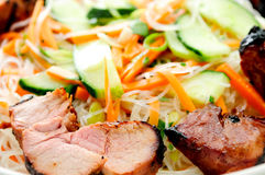 Brined pork tenderloin, rice noodles in cool summer salad Royalty Free Stock Photo
