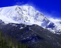 Bringen Sie Chapin mit dem Schnee an, der die Spitze in Rocky Mountain National Park wegbläst Stockbilder