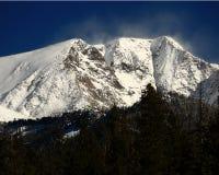 Bringen Sie Chapin mit dem Schnee an, der die Spitze in Rocky Mountain National Park wegbläst Stockbild
