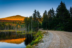 Bringen Sie die Täuschung an, die in einen Teich entlang einem Schotterweg im Weiß sich reflektiert Lizenzfreies Stockfoto