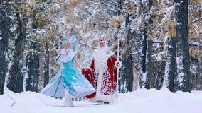 Bringen Sie Frost und Schnee-Mädchen im schönen schneebedeckten Wald zusammen gehend hervor stock footage