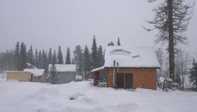 Bringen Sie im Wald in den Bergen am Winterwetter unter Natur im Winter Landschaftspanorama Sheregesh, Sibirien Lizenzfreie Stockfotografie