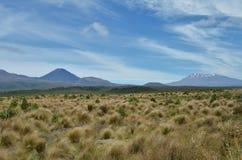 Bringen Sie Ngauruhoe an und bringen Sie Ruhapehu hinter großes breites Feld an lizenzfreie stockbilder