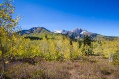 Bringen Sie Timpanogos in Herbst gegen einen blauen Himmel an stockfotos