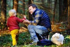 Bringen Sie und sein kleiner Sohn hervor, der während der wandernden Tätigkeiten im Wald bei Sonnenuntergang geht Stockbild