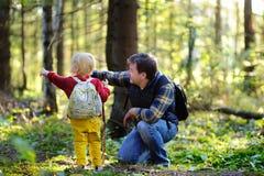 Bringen Sie und sein kleiner Sohn hervor, der während der wandernden Tätigkeiten im Wald bei Sonnenuntergang geht Stockbilder