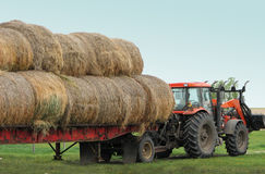 Bringing the Feed. A red tractor with a loader on the front of it and it's pulling a flat-bed trailer loaded with big round bales Royalty Free Stock Images