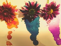 Bringing flowers back to life. Flowers dyed with inks Stock Photo