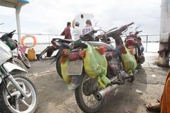 Chicken souvenirs on ferry to Saigon royalty free stock photo