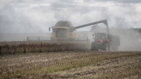 Bringing in the harvest royalty free stock photo
