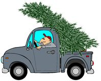 Bringing home the Christmas tree Stock Images