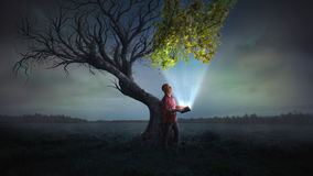Bringing life to a tree. A man holds open a glowing book, that leads to life on a dead tree Royalty Free Stock Images