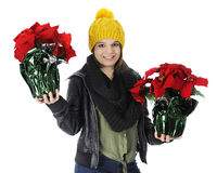 Bringing Poinsettia Gifts Royalty Free Stock Photo