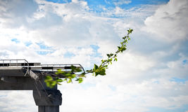 Bringing it to new life. Green sprout growing on destructed bridge against blue sky. Mixed media royalty free stock photos