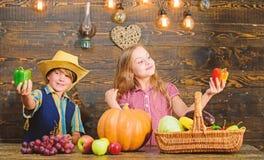 Bringt die Landwirtschaft Kindern bei, wohin ihre Nahrung von kommt Familien-Bauernhof Geschwister, die Spa? haben Kinder, die Ba stockfotografie