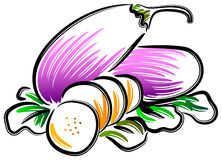 Brinjal. Illustrated eggplant clip art on isolated white background Royalty Free Stock Images