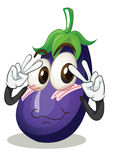 Brinjal Royalty Free Stock Images