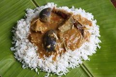Brinjal sambar - A lentil soup from Tamilnadu Stock Photography