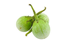 Brinjal seeds Stock Photo