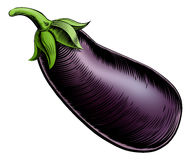 Brinjal vintage woodcut illustration Stock Images