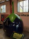 Brinjalbil på Sudha Cars Museum, Hyderabad Arkivfoton