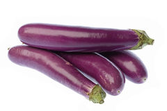 Brinjals Isolated Stock Photo