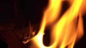 Brinnande brand 02 stock video