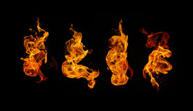 Brinnande brandsamling Arkivbilder