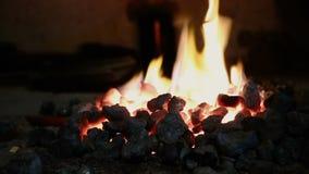 Brinnande flamma i spisen stock video