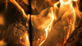 Brinnande journalbrand lager videofilmer