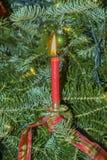 Brinnande julcandels på julträdet Royaltyfri Bild