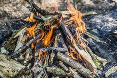 Brinnande kol i grillfesten, bakgrundsbrand Royaltyfria Bilder