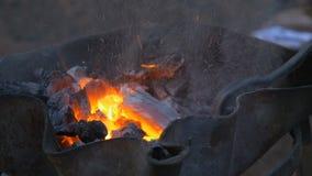 Brinnande kol i härden av en hovslagare lager videofilmer