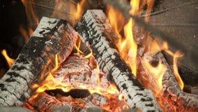 Brinnande ner wood slut upp arkivfilmer