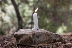 Brinnande stearinljus in i det löst på en grön bakgrund royaltyfri foto