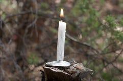 Brinnande stearinljus på trä Royaltyfri Bild