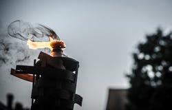 Brinnande tikifackla i trädgården Arkivfoton