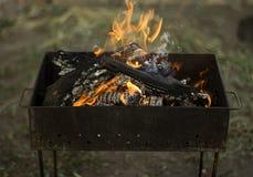 Brinnande trä Arkivbild