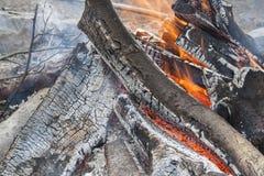Brinnande trä, brännande lägerbrand Arkivbild