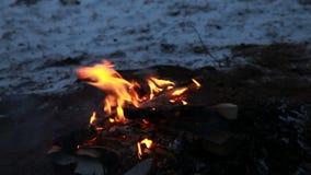 Brinnande trä i den kalla natten, utomhus- vinterlägereld stock video