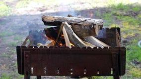 Brinnande trä i fyrpanna arkivfilmer
