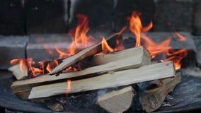 Brinnande trä i spisen stock video